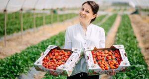 Пять крымских производителей плодово-ягодных культур заслужили статус «Лучшее Предприятие России 2020» - Андрей Рюмшин