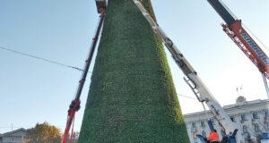 Как выглядит новая новогодняя елка Симферополя, - ФОТОФАКТ