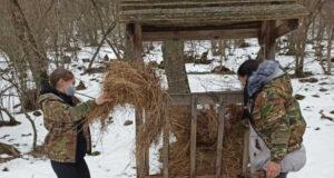 Минприроды РК: Воспитанники школьного лесничества «Росток» в условиях зимних холодов осуществляют подкормку диких животных