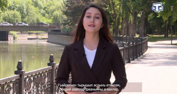 Рубрика «Шиир» 28.05.21
