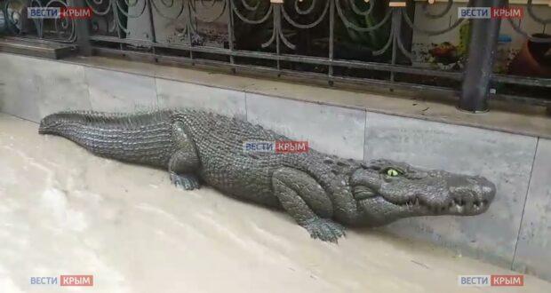 В Ялте полностью затопило крокодиляриум