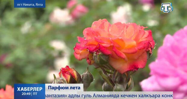 В Никите – парад роз и ирисов