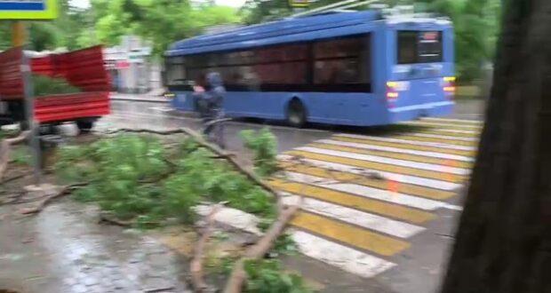 В Севастополе устранят последствия ночной непогоды