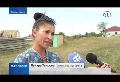 В Крыму продолжается борьба с амброзией