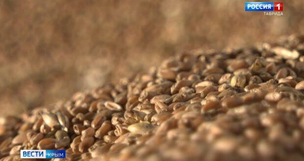 Крым экспортирует пшеницу в шесть стран мира