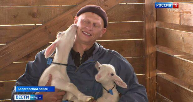 Крымские фермеры занимают призовые места на всероссийских конкурсах
