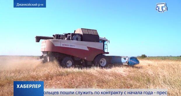 Время семечек: в Крыму убирают подсолнечник