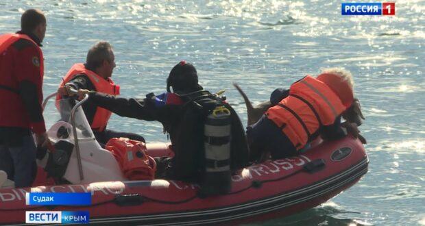 Масштабные учения спасателей прошли в Судаке